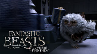 Fantastic Beasts and Where To Find Them (2016) on Netflix in the Netherlands